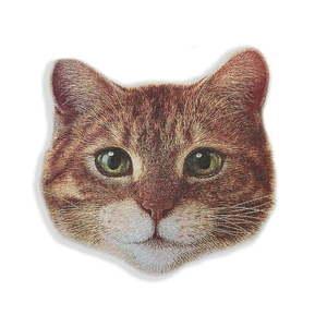 Poduszka dekoracyjna z mikrowłókna Really Nice Things Cat Face obraz