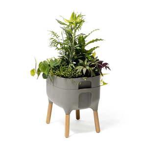 Szary pojemnik do uprawy roślin Plastia Low Urbalive, wys. 48 cm obraz