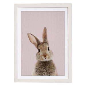 Obraz w ramie Querido Bestiario Baby Rabbit, 30x40 cm obraz