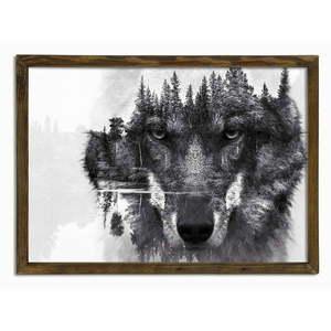 Obraz Husky, 70x50 cm obraz