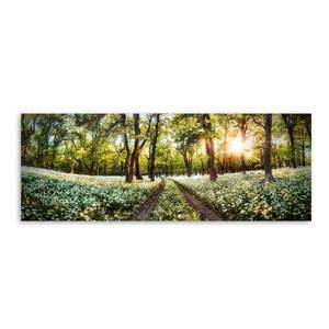 Obraz na płótnie Styler Spring, 150x60 cm obraz