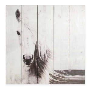 Drewniany obraz Graham & Brown Horse, 50x50 cm obraz
