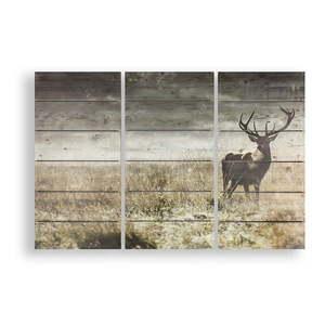 Drewniany obraz wieloczęściowy Graham & Brown Highland Stag obraz