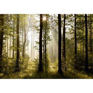 Fototapeta XXL Poranny las 360 x 270 cm, 4 części obraz