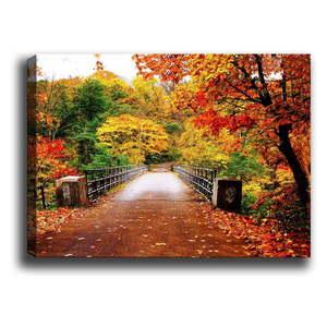 Obraz Bridge obraz