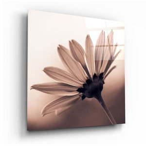 Szklany obraz Insigne Flower, 40x40 cm obraz