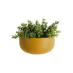 Matowa żółta ceramiczna doniczka ścienna PT LIVING Nest obraz