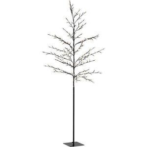 Drzewko dekoracyjne z oświetleniem LED obraz