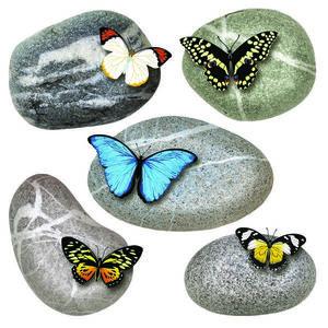 Naklejka Butterflies on Stones, 30 x 30 cm obraz